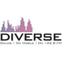 Diverse FM 128x128 Logo